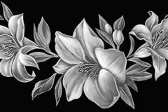 lilii3-min